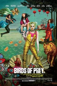 Birds of Prey: And the Fantabulous Emancipation of One Harley Quinn (2020) Bangla Subtitle