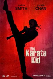 The Karate Kid Bangla Subtitle – দ্য কারাটি কিড