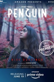 Penguin (2020) Bangla Subtitle – পেঙ্গুইন