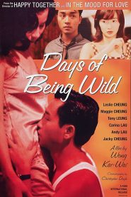 Days of Being Wild (1990) Bangla Subtitle – (Ah fei zing zyun)