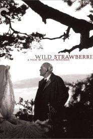 Wild Strawberries (1957) Bangla Subtitle – (Smultronstället)
