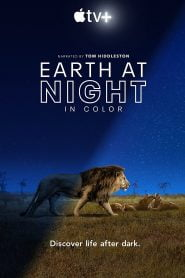 Earth at Night in Color Bangla Subtitle – আর্থ এট নাইট ইন কালার